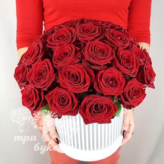 31 красная роза в коробке