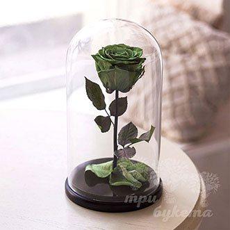 Зеленая роза в колбе Premium 26 см