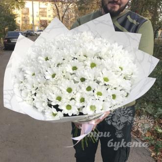 Букет из 25 кустовых хризантем